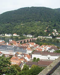 #65 View on the Old Bridge - Heidelberg (Germany)