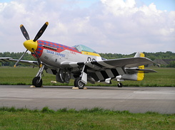 #193 North American P-51D Mustang (N11T / 474425 / OC-G)