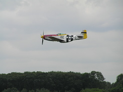 #209 North American P-51D Mustang (N11T / 474425 / OC-G)