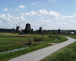 #244 The Zaanse Schans at Zaanstad (Holland)