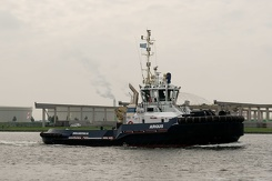#3436 Dutch Tug Argus - Sail Amsterdam 2015 (Holland)