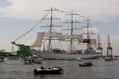 #3449 Polish Tall Ship Dar Młodzieży - Sail Amsterdam 2015 (Holland)