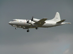 #196 Royal Netherlands Navy - Lockheed P-3C Orion (303)