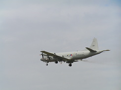 #197 Royal Netherlands Navy - Lockheed P-3C Orion (303)