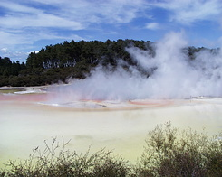 #423 Artist's Palette - Wai-O-Tapu Thermal Wonderland (New Zealand)