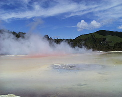#425 Artist's Palette - Wai-O-Tapu Thermal Wonderland (New Zealand)