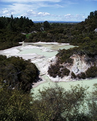 #426 Frying Pan Flat - Wai-O-Tapu Thermal Wonderland (New Zealand)