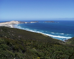 #626 Te Werahi Beach and Cape Maria van Diemen (New Zealand)