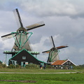 #918 Mills The Cat and The Seeker - Zaanse Schans (Holland)