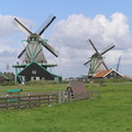 #919 Mills The Cat and The Seeker - Zaanse Schans (Holland)