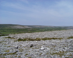 #1035 The Burren landscape - The Burren National Park (Ireland)