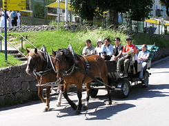 #2213 Horse-Drawn Carriage - Hohenschwangau (Germany)