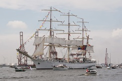 #3447 Polish Tall Ship Dar Młodzieży - Sail Amsterdam 2015 (Holland)