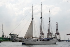 #3491 Dutch Tall Ship Minerva - Sail Amsterdam 2015 (Holland)