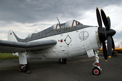 #4951 German Navy - Fairey Gannet AS.4 (UA+106)